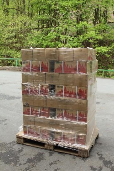 BBQ-Brix im 10 kg Karton je Palette - Holzkohle-Grill